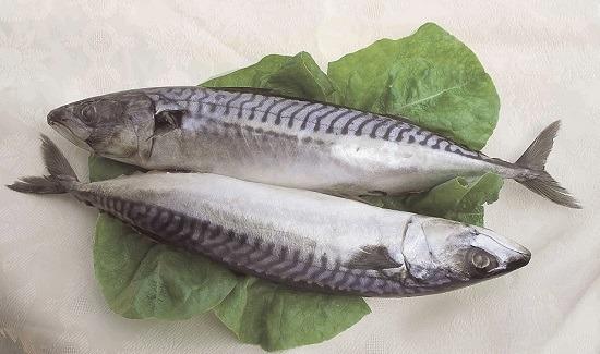 Makreel met walnoten