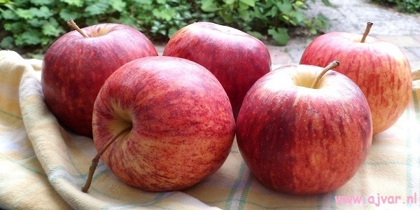 appelsoep
