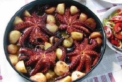 Octopus uit Kvarner